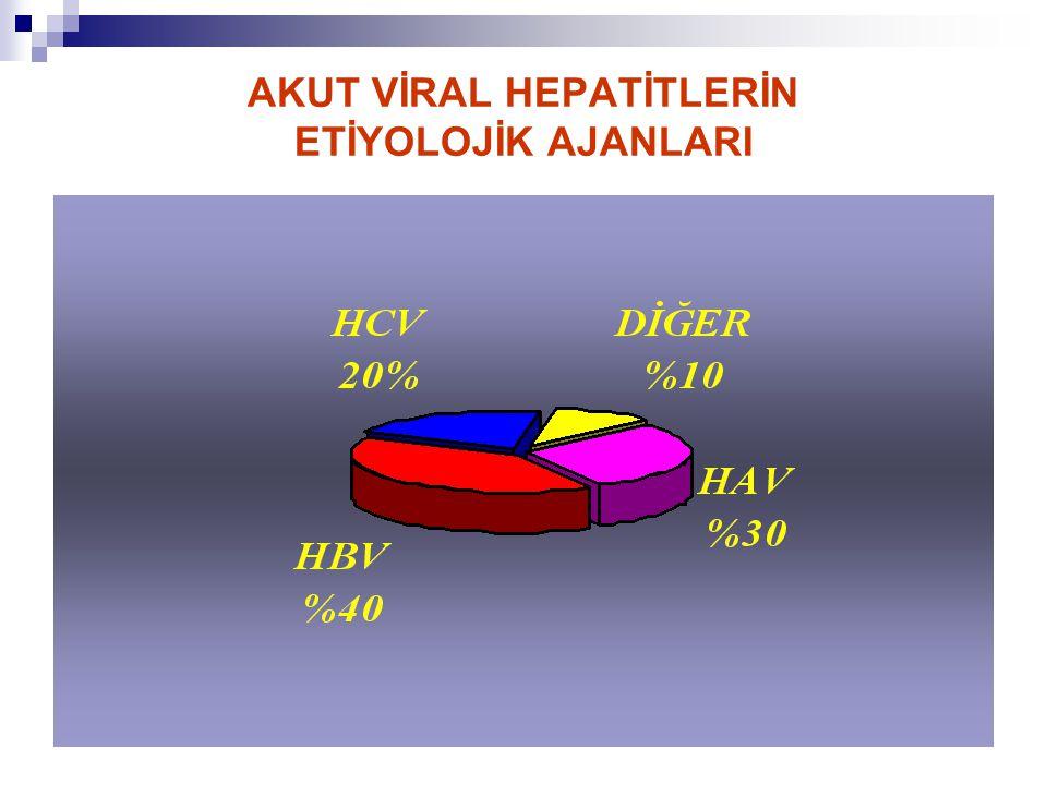 VİRÜSLERİN BULAŞMA YOLLARI Hepatit A Virüsü Hepatit E Virüsü Hepatit B Virüsü Hepatit C Virüsü Hepatit D Virüsü Hepatit G Virüsü Hepatit TT Virüsü