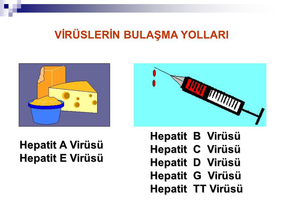 Sıtma Sıtma olgusu saptanan illerin başında Diyarbakır, Batman, Adana ve Şanlı Urfa gelmektedir.