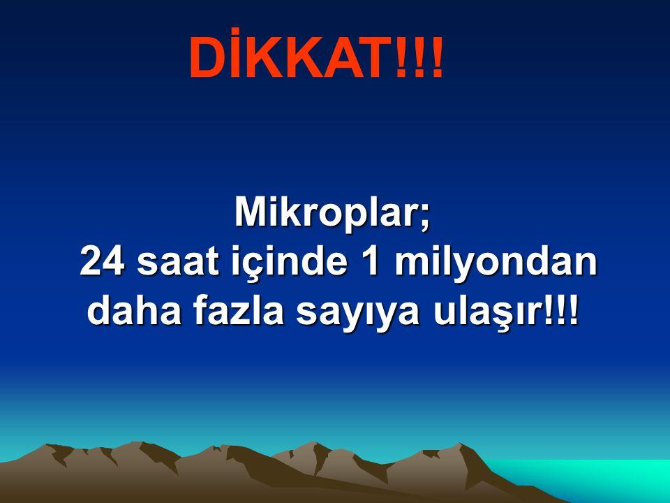 Mikroplar; 24 saat içinde 1 milyondan daha fazla sayıya ulaşır!!! DİKKAT!!!