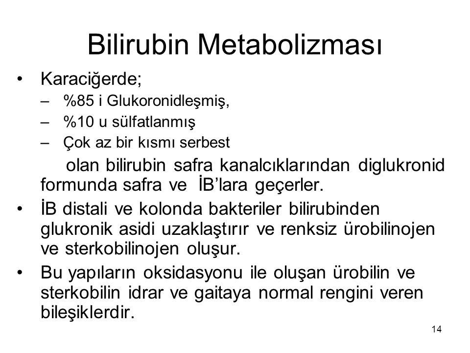 14 Bilirubin Metabolizması Karaciğerde; –%85 i Glukoronidleşmiş, –%10 u sülfatlanmış –Çok az bir kısmı serbest olan bilirubin safra kanalcıklarından diglukronid formunda safra ve İB'lara geçerler.