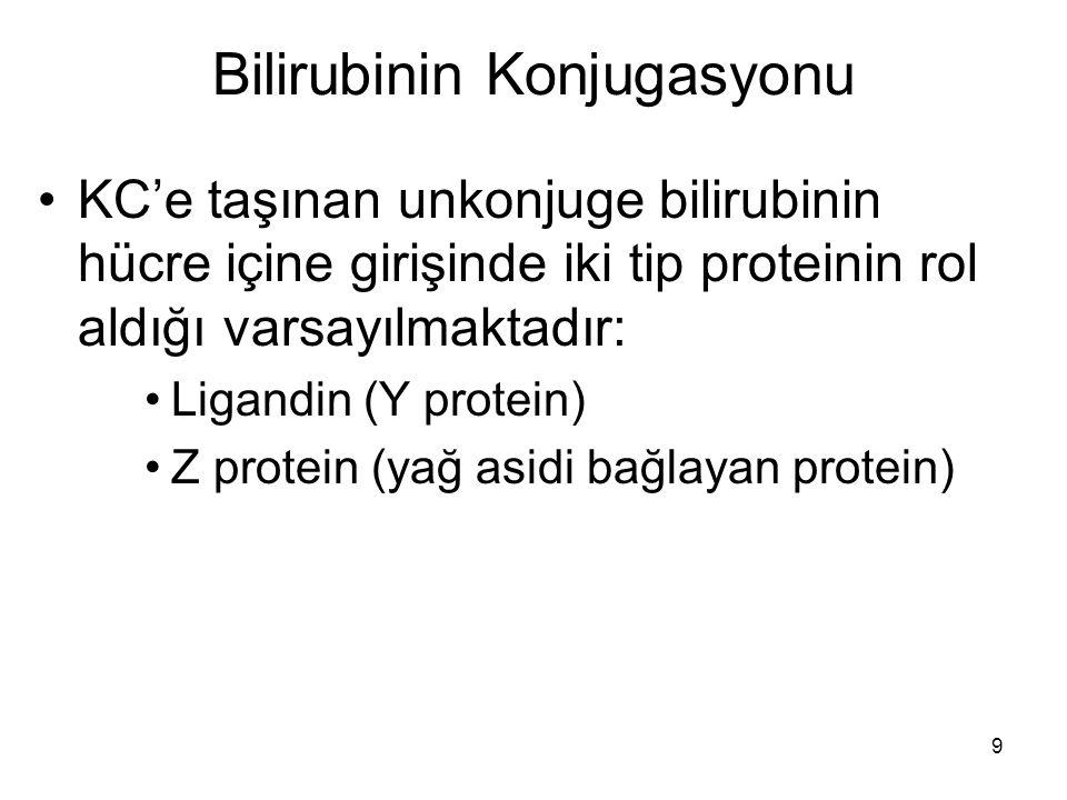 9 Bilirubinin Konjugasyonu KC'e taşınan unkonjuge bilirubinin hücre içine girişinde iki tip proteinin rol aldığı varsayılmaktadır: Ligandin (Y protein) Z protein (yağ asidi bağlayan protein)