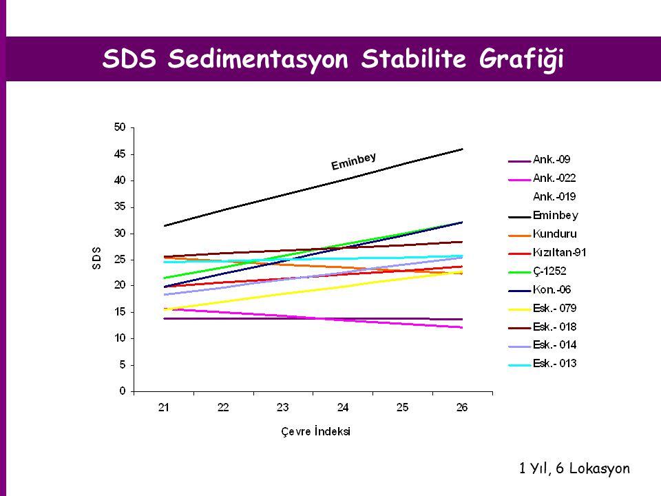 SDS Sedimentasyon Stabilite Grafiği 1 Yıl, 6 Lokasyon Eminbey