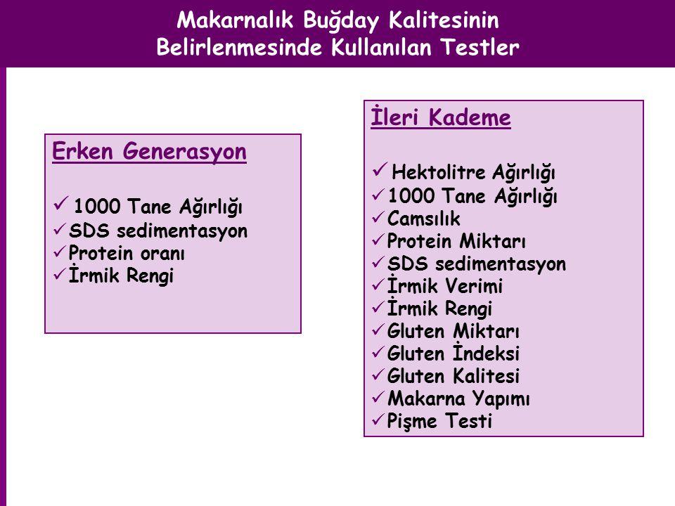 SDS Sedimentasyon (ml)