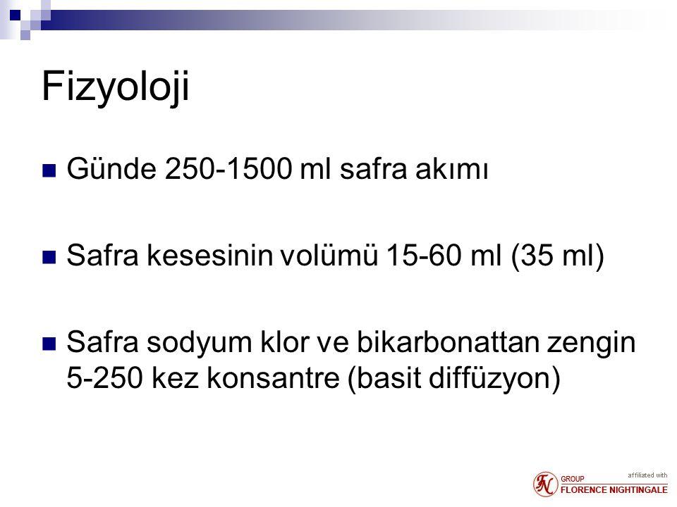 Fizyoloji Günde 250-1500 ml safra akımı Safra kesesinin volümü 15-60 ml (35 ml) Safra sodyum klor ve bikarbonattan zengin 5-250 kez konsantre (basit diffüzyon)