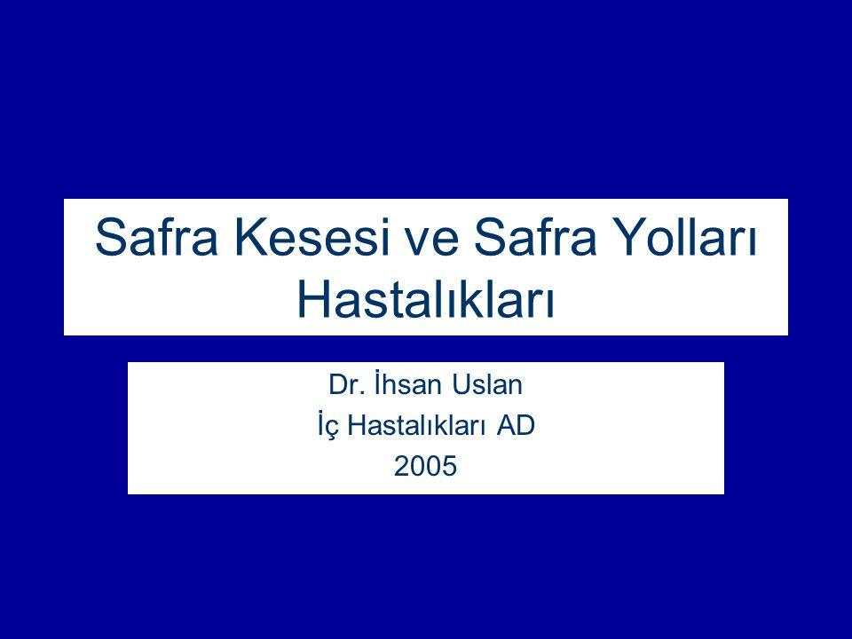 Safra Kesesi ve Safra Yolları Hastalıkları Dr. İhsan Uslan İç Hastalıkları AD 2005