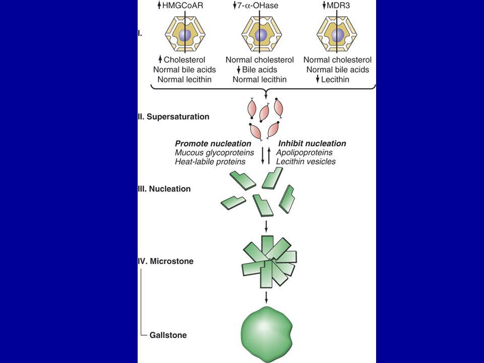 Pigment taşları iki gruptur Siyah pigment taşları –kalsiyumun bilirubin yada glikoproteinler ile yaptığı komplekslerdir –en sık siroz ve kronik hemolitik durumlarda görülür Kahverengi pigment taşları –Genellikle enfeksiyon ile ilişkilidir –Beta glukorinidaz bilirübini dekonjüge eder ve değişen oranlarda protein ve kolesterolde içeren kalsiyum tuzları oluşur