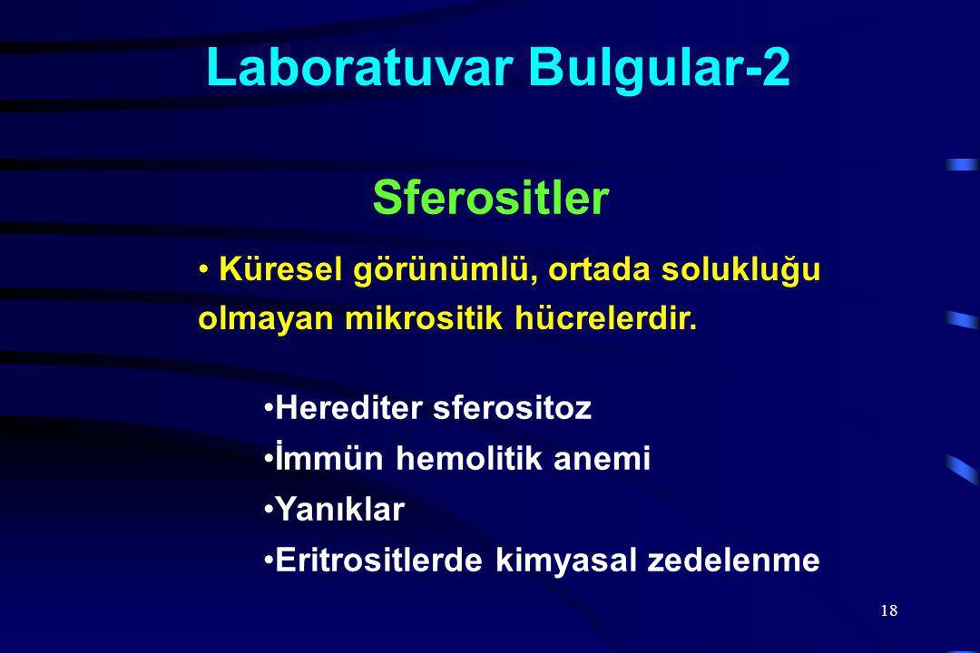 18 Laboratuvar Bulgular-2 Küresel görünümlü, ortada solukluğu olmayan mikrositik hücrelerdir.