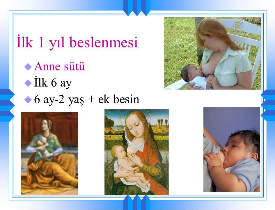 Tarihte anne sütü u Eski Mısır: MÖ 1550 yılından kaldığı sanılan Ebers Papirusu'nda bebekleri beslemenin tek yolunun anne sütü ile besleme olduğu ve b