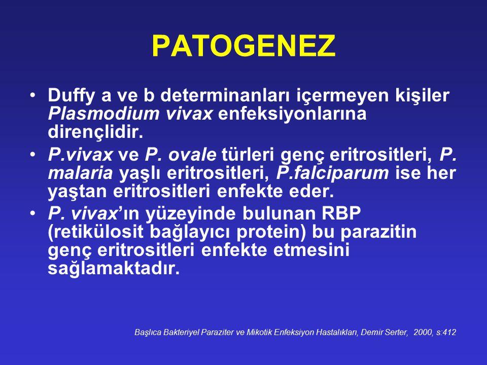 PATOGENEZ Duffy a ve b determinanları içermeyen kişiler Plasmodium vivax enfeksiyonlarına dirençlidir. P.vivax ve P. ovale türleri genç eritrositleri,