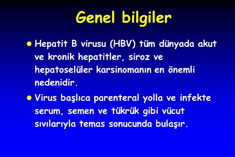 Genel bilgiler l Hepatit B virusu (HBV) tüm dünyada akut ve kronik hepatitler, siroz ve hepatoselüler karsinomanın en önemli nedenidir.