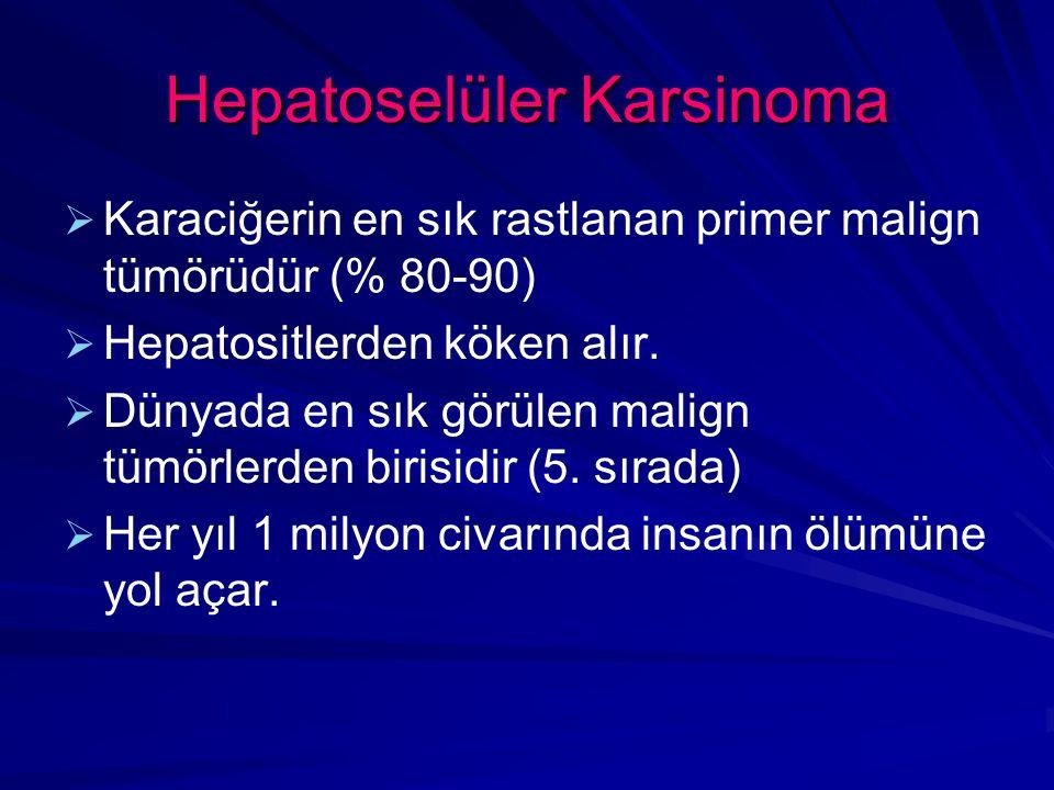 Hepatoselüler Karsinoma   Karaciğerin en sık rastlanan primer malign tümörüdür (% 80-90)   Hepatositlerden köken alır.
