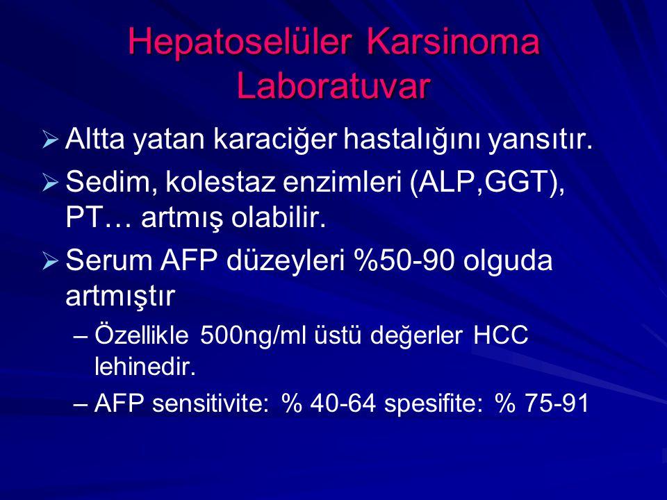 Hepatoselüler Karsinoma Laboratuvar   Altta yatan karaciğer hastalığını yansıtır.