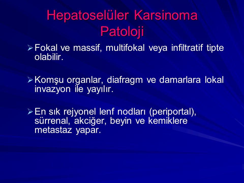 Hepatoselüler Karsinoma Patoloji   Fokal ve massif, multifokal veya infiltratif tipte olabilir.
