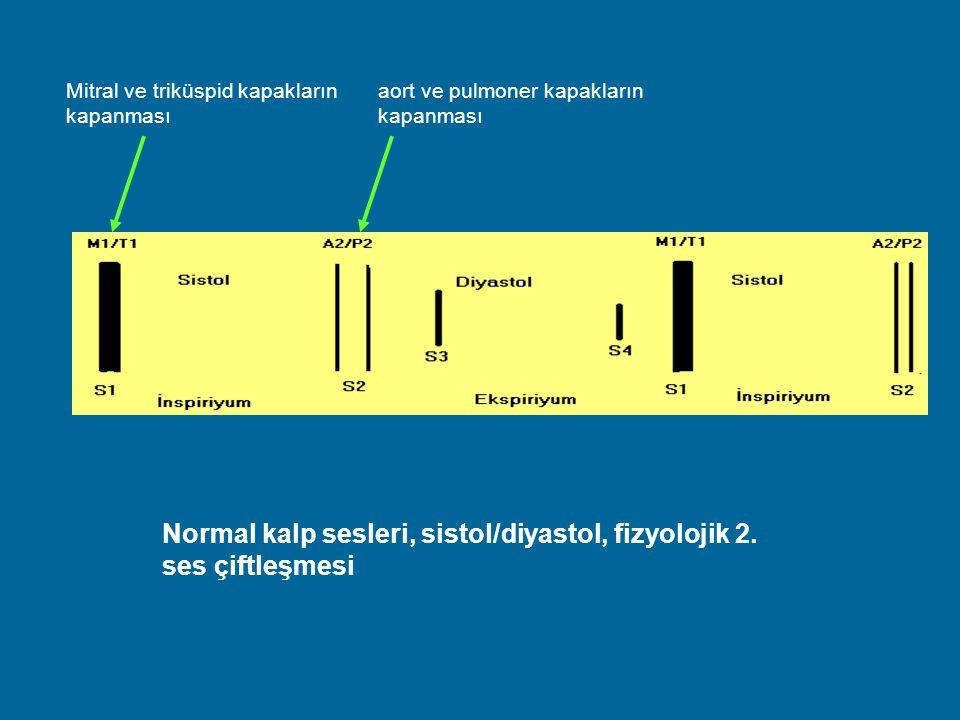 Normal kalp sesleri, sistol/diyastol, fizyolojik 2. ses çiftleşmesi aort ve pulmoner kapakların kapanması Mitral ve triküspid kapakların kapanması