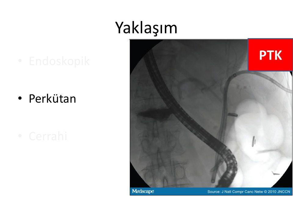 Yaklaşım Endoskopik Perkütan Cerrahi PTK