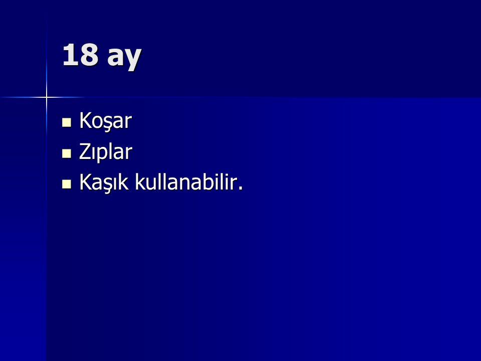 18 ay Koşar Koşar Zıplar Zıplar Kaşık kullanabilir. Kaşık kullanabilir.
