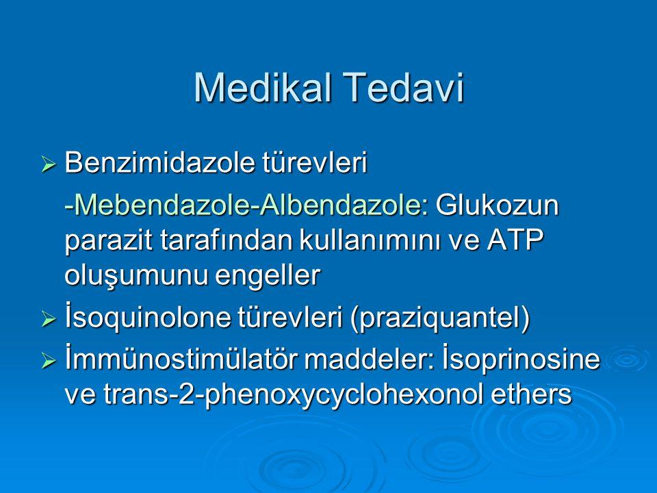 Medikal Tedavi  Benzimidazole türevleri -Mebendazole-Albendazole: Glukozun parazit tarafından kullanımını ve ATP oluşumunu engeller  İsoquinolone tü