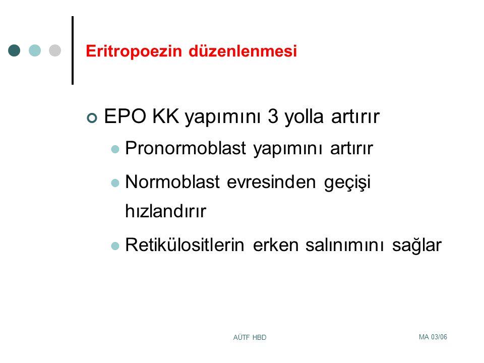 MA 03/06 AÜTF HBD Eritropoezin düzenlenmesi EPO KK yapımını 3 yolla artırır Pronormoblast yapımını artırır Normoblast evresinden geçişi hızlandırır Re