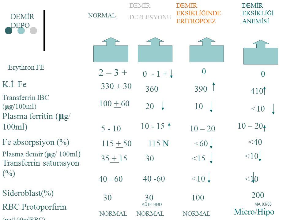 MA 03/06 AÜTF HBD RBC Protoporfirin µ/) (µg/100mlRBC) Sideroblast(%) Transferrin saturasyon (%) µ Plasma ferritin ( µ g/ 100ml) K.İ Fe µ Transferrin I