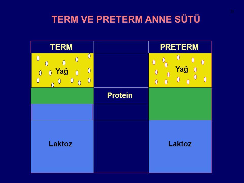 Laktoz Laktoz TERM VE PRETERM ANNE SÜTÜ TERMPRETERM Protein Yağ 39