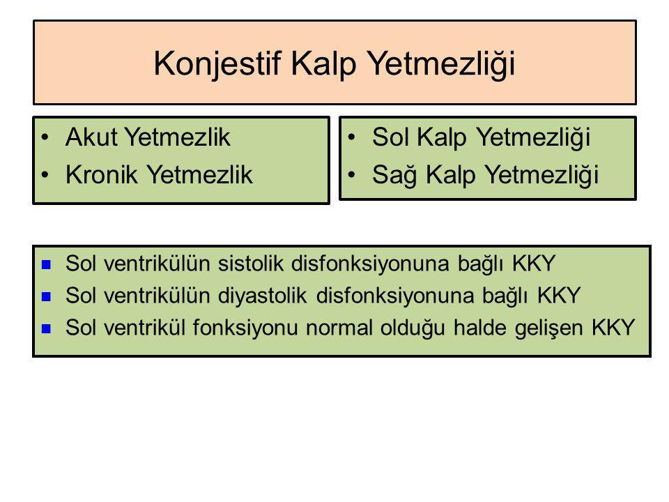 Spesiyaliteler Digoksin DİGOXİN 0,25 mg, 50 tablet 0,5 mg/mL (30 damla), 30 mL damla 0,5 mg/2 mL, 5 ampul DİGOXİNE NATİVELLE 0,25 mg, 40 tablet