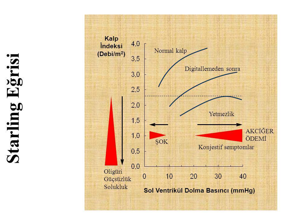 Starling Eğrisi Kalp İndeksi (Debi/m 2 ) Sol Ventrikül Dolma Basıncı (mmHg) Normal kalp Digitallemeden sonra Yetmezlik Oligüri Güçsüzlük Solukluk Konj