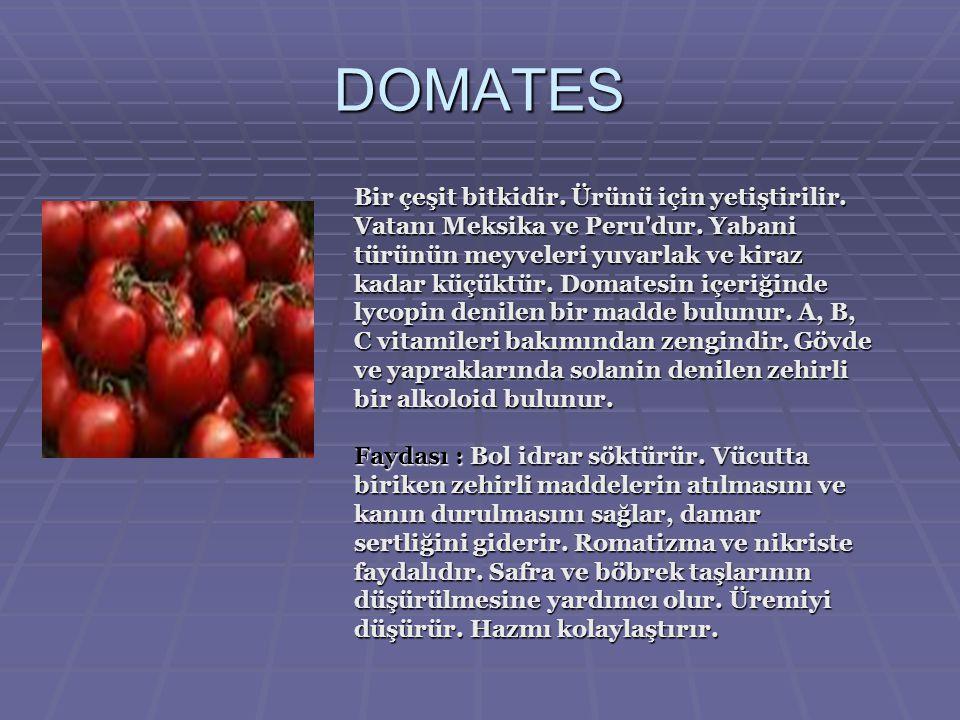 DOMATES Bir çeşit bitkidir.Ürünü için yetiştirilir.