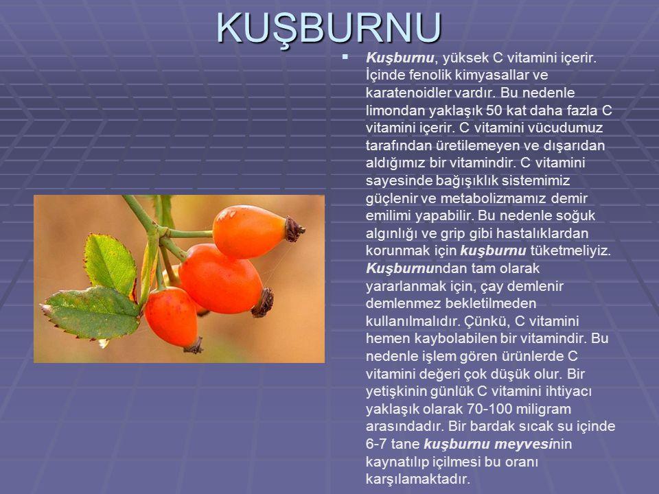 KUŞBURNU  Kuşburnu, yüksek C vitamini içerir.İçinde fenolik kimyasallar ve karatenoidler vardır.