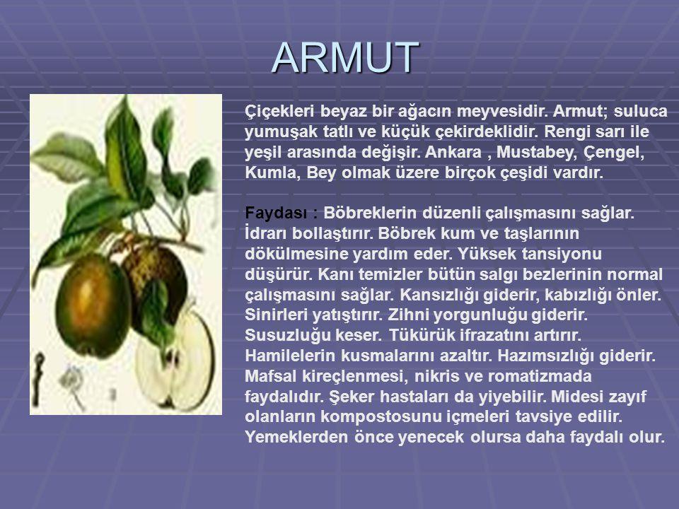 ARMUT Çiçekleri beyaz bir ağacın meyvesidir.Armut; suluca yumuşak tatlı ve küçük çekirdeklidir.