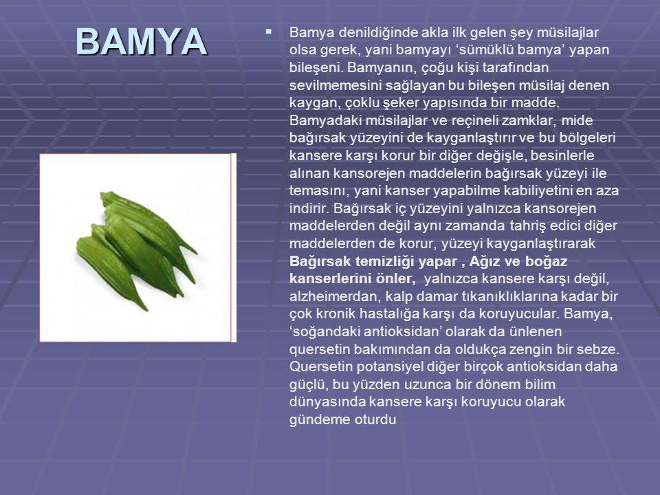 BAMYA   Bamya denildiğinde akla ilk gelen şey müsilajlar olsa gerek, yani bamyayı 'sümüklü bamya' yapan bileşeni.