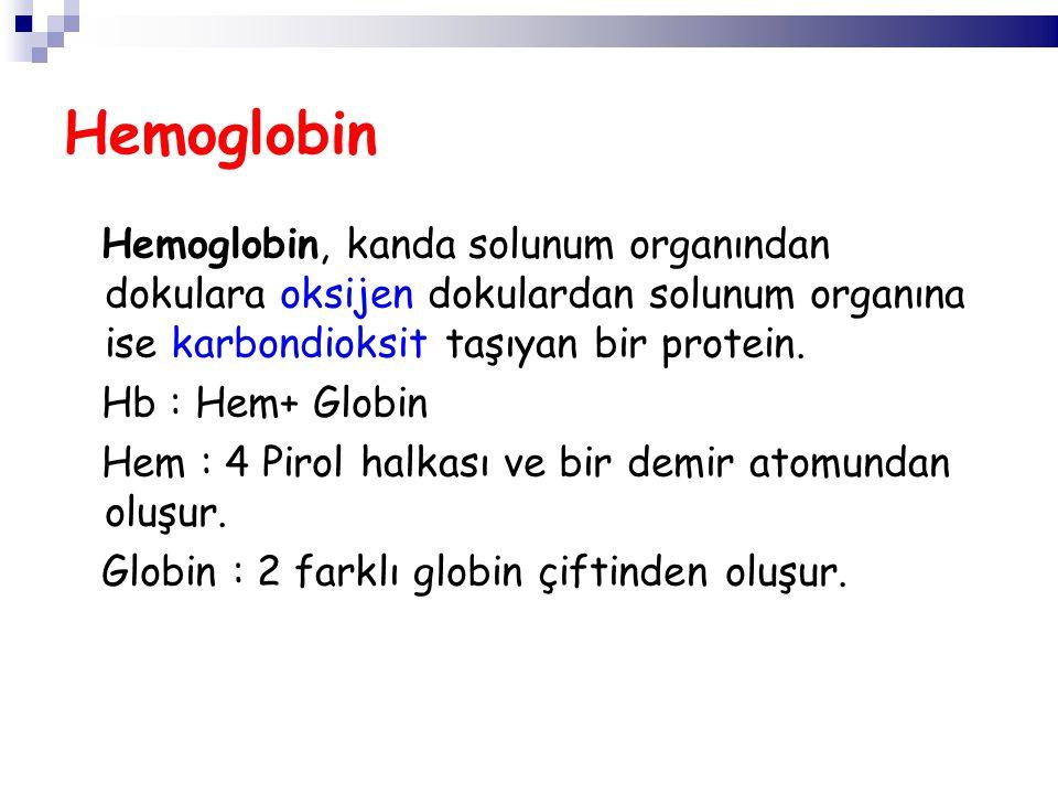 Hemoglobin, kanda solunum organından dokulara oksijen dokulardan solunum organına ise karbondioksit taşıyan bir protein. Hb : Hem+ Globin Hem : 4 Piro
