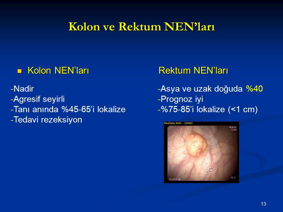 Kolon ve Rektum NEN'ları Kolon NEN'larıRektum NEN'ları Kolon NEN'larıRektum NEN'ları -Nadir -Agresif seyirli -Tanı anında %45-65'i lokalize -Tedavi re