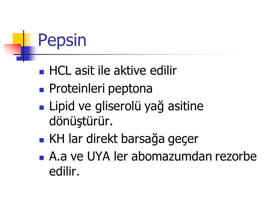 Pepsin HCL asit ile aktive edilir Proteinleri peptona Lipid ve gliserolü yağ asitine dönüştürür.