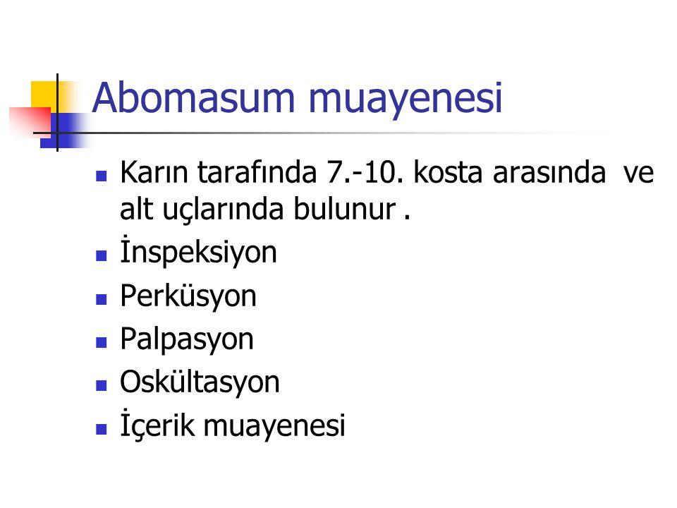 Abomasum muayenesi Karın tarafında 7.-10.kosta arasında ve alt uçlarında bulunur.