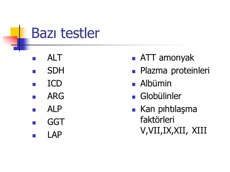 Bazı testler ALT SDH ICD ARG ALP GGT LAP ATT amonyak Plazma proteinleri Albümin Globülinler Kan pıhtılaşma faktörleri V,VII,IX,XII, XIII