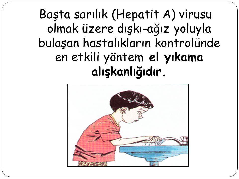 Halen dünyada en sık ve en çok görülen hastalıklar grubunu enfeksiyon hastalıkları oluşturmaktadır. Doğru el yıkama şekli ve alışkanlığının insanlara
