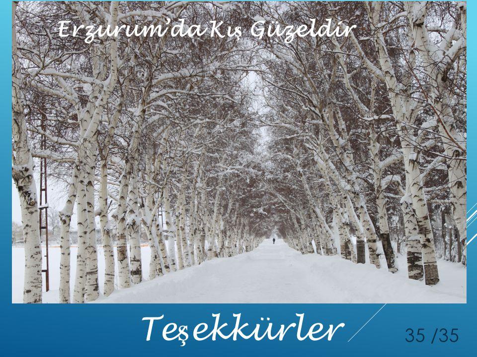 Te ş ekkürler 35 /35 Erzurum'da Kı ş Güzeldir