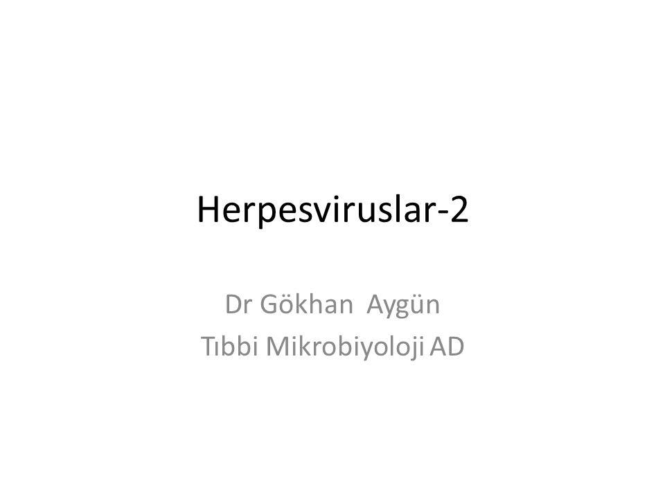 Herpesviruslar-2 Dr Gökhan Aygün Tıbbi Mikrobiyoloji AD