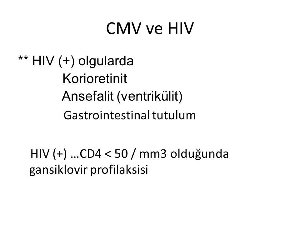 CMV ve HIV ** HIV (+) olgularda Korioretinit Ansefalit (ventrikülit) Gastrointestinal tutulum HIV (+) …CD4 < 50 / mm3 olduğunda gansiklovir profilaksi