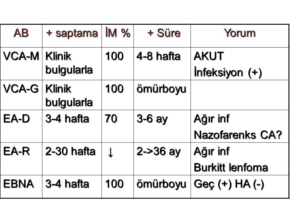 AB + saptama İM % + Süre + SüreYorum VCA-M Klinik bulgularla 100 4-8 hafta AKUT İnfeksiyon (+) VCA-G Klinik bulgularla 100ömürboyu EA-D 3-4 hafta 70 3-6 ay Ağır inf Nazofarenks CA.