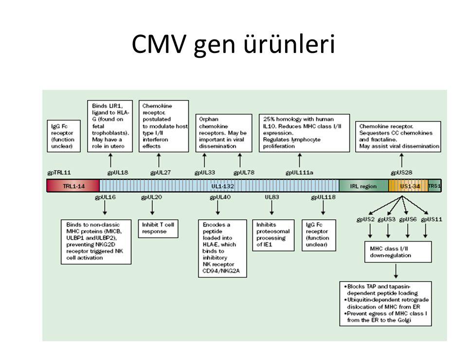 CMV Transplantasyon olgularında en sık klinik tablo İnterstisyel pnömoni