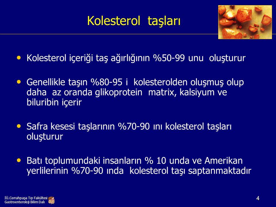 Kolesterol taşı oluşumunda risk faktörleri Yaş (>70) Dişi cinsiyet (x 2-3) Multiparite Obezite Hızlı kilo kaybı Etnisite (25 yaşındaki Pima indian kadınlarının %70 inde ve 50 yaş üzerindeki iskandinav kadınların %50 sinde safra taşı bulunur) Kronik safra kesesi stazı Ceftriaxone, oral kontraseptifler, octreotide ve cholestyramine kullanımı Hipertrigliseridemi Terminal ileum hastalıkları (Crohn hastalığı, >80-100 cm terminal ileum rezeksiyonu) İÜ.Cerrahpaşa Tıp Fakültesi Gastroenteroloji Bilim Dalı 5
