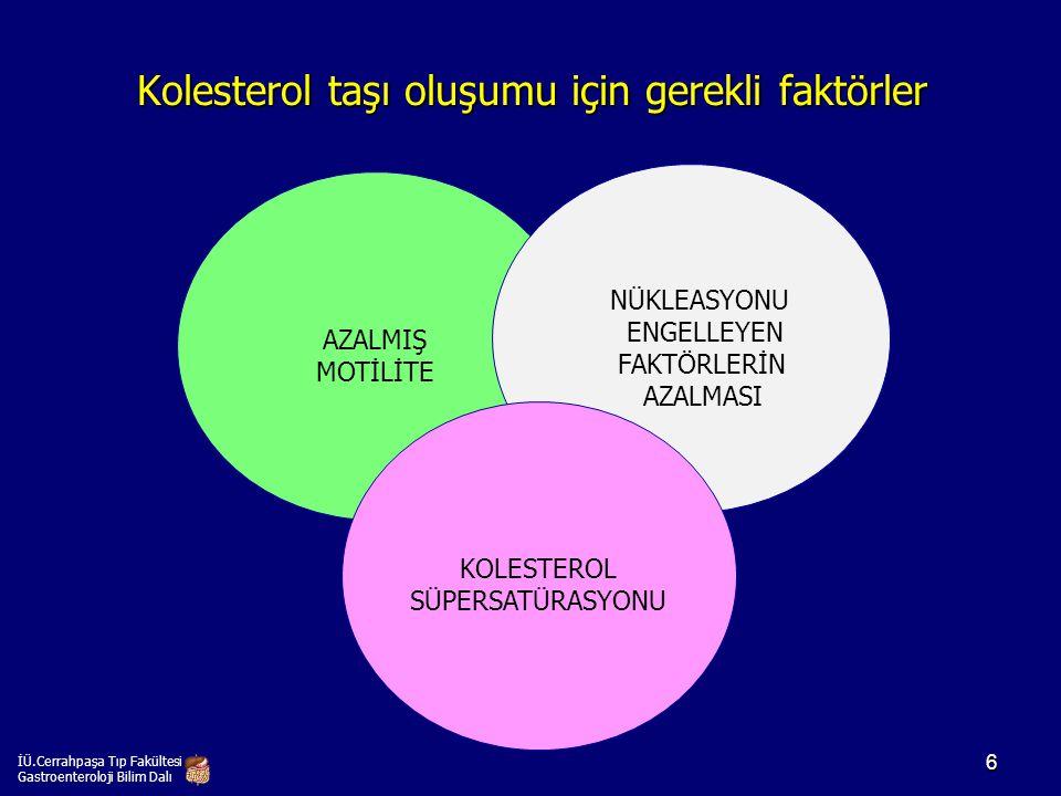 Kolesterol taşı oluşumu için gerekli faktörler İÜ.Cerrahpaşa Tıp Fakültesi Gastroenteroloji Bilim Dalı AZALMIŞ MOTİLİTE NÜKLEASYONU ENGELLEYEN FAKTÖRL