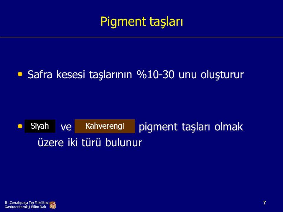 İÜ.Cerrahpaşa Tıp Fakültesi Gastroenteroloji Bilim Dalı 38
