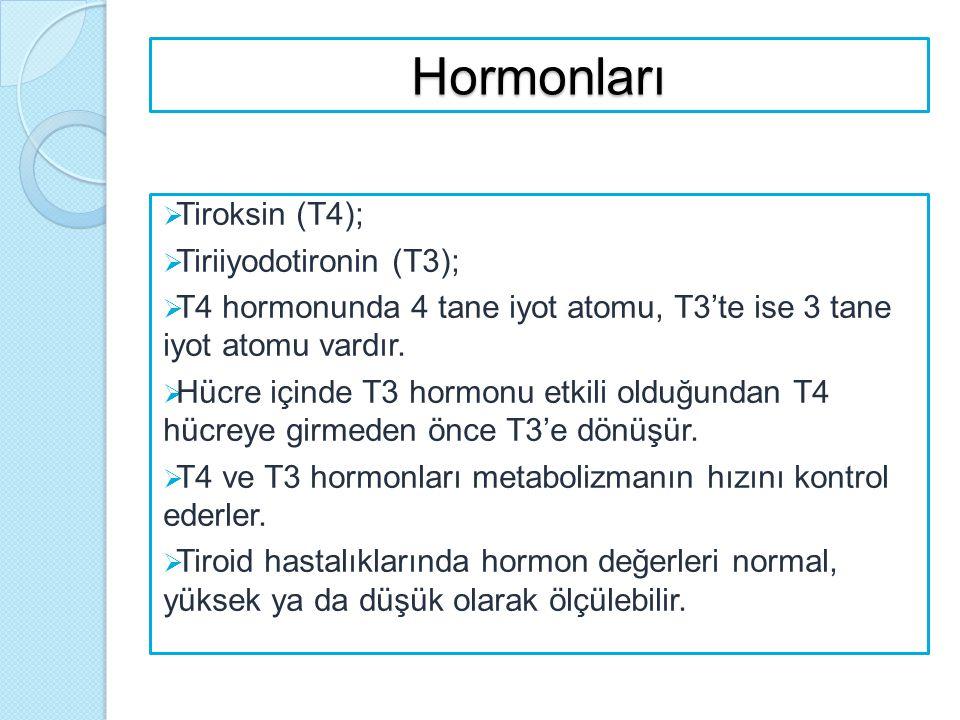 Hormonları  Tiroksin (T4);  Tiriiyodotironin (T3);  T4 hormonunda 4 tane iyot atomu, T3'te ise 3 tane iyot atomu vardır.  Hücre içinde T3 hormonu