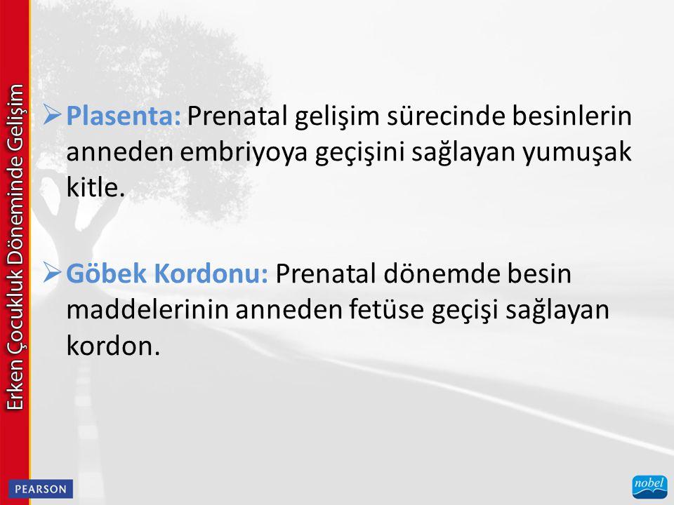  Plasenta: Prenatal gelişim sürecinde besinlerin anneden embriyoya geçişini sağlayan yumuşak kitle.  Göbek Kordonu: Prenatal dönemde besin maddeleri