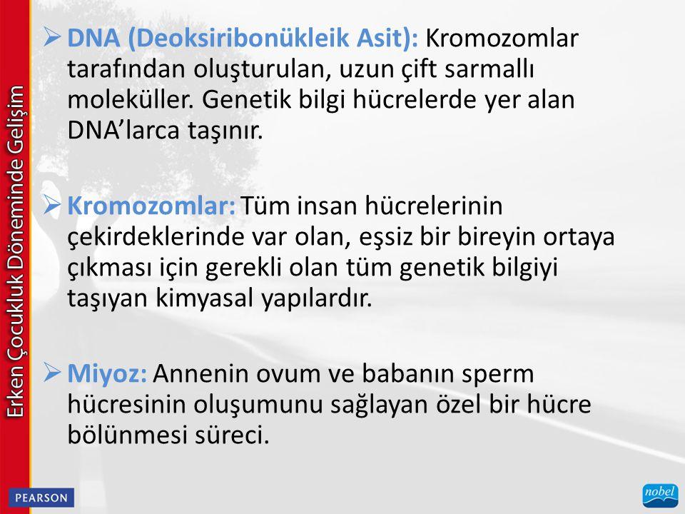  DNA (Deoksiribonükleik Asit): Kromozomlar tarafından oluşturulan, uzun çift sarmallı moleküller. Genetik bilgi hücrelerde yer alan DNA'larca taşınır