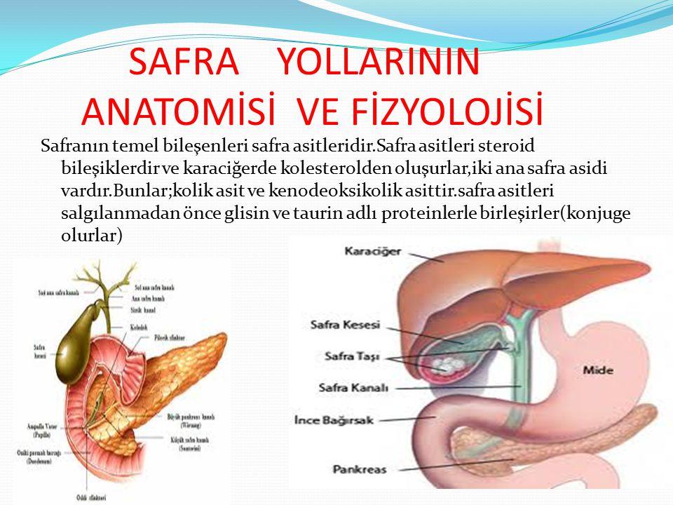 SAFRA YOLLARININ ANATOMİSİ VE FİZYOLOJİSİ Safranın temel bileşenleri safra asitleridir.Safra asitleri steroid bileşiklerdir ve karaciğerde kolesterold