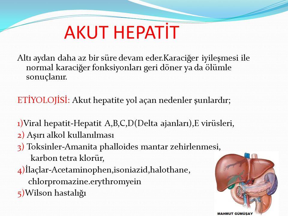 AKUT HEPATİT Altı aydan daha az bir süre devam eder.Karaciğer iyileşmesi ile normal karaciğer fonksiyonları geri döner ya da ölümle sonuçlanır. ETİYOL