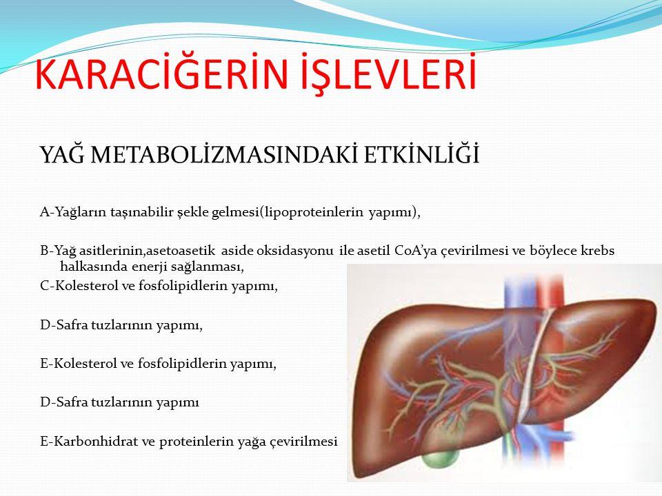 KARACİĞER YAĞLANMASI ETİYOLOJİSİ: 1) Kolin,metionin gibi lipotrofik faktörlerin diyette olması, 2) Emilen diyet yağları veya adipoz dokudan gelen yağların karaciğerde aşırı yağ asidi birikimi oluşturması, 3) Yağ asidi sentezinin artması 4) Yağ oksidasyonun azalması